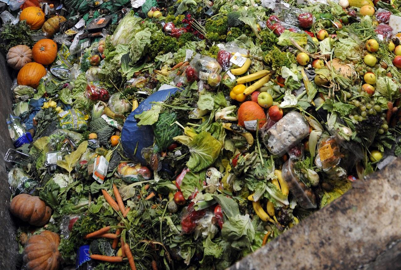 Kidobott élelmiszerek Franciaországban (JEAN-CHRISTOPHE VERHAEGEN / AFP)