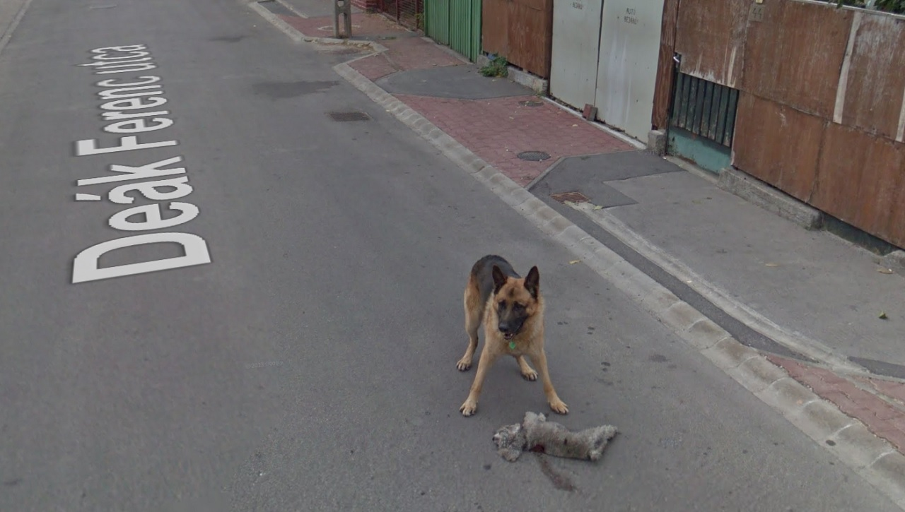 google térkép utcakép magyarország google street view   444 google térkép utcakép magyarország