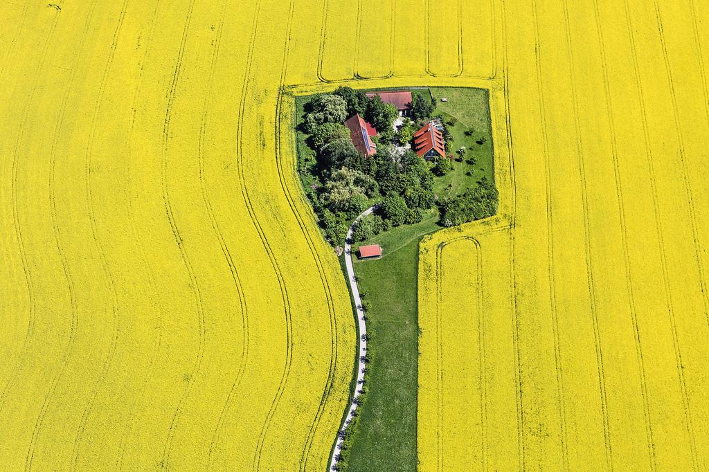 Farm a repceföld közepén, Németország